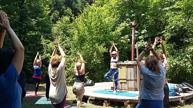 yogagreen